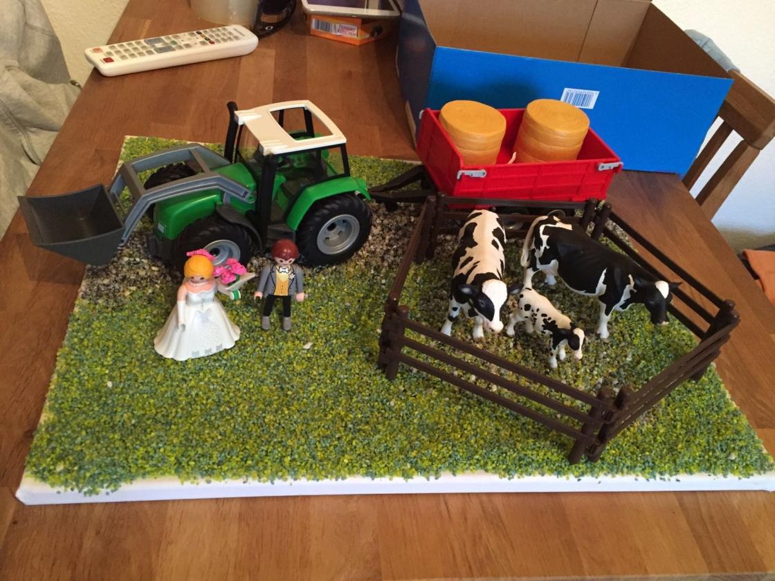 Geldgeschenk-landwirt-006