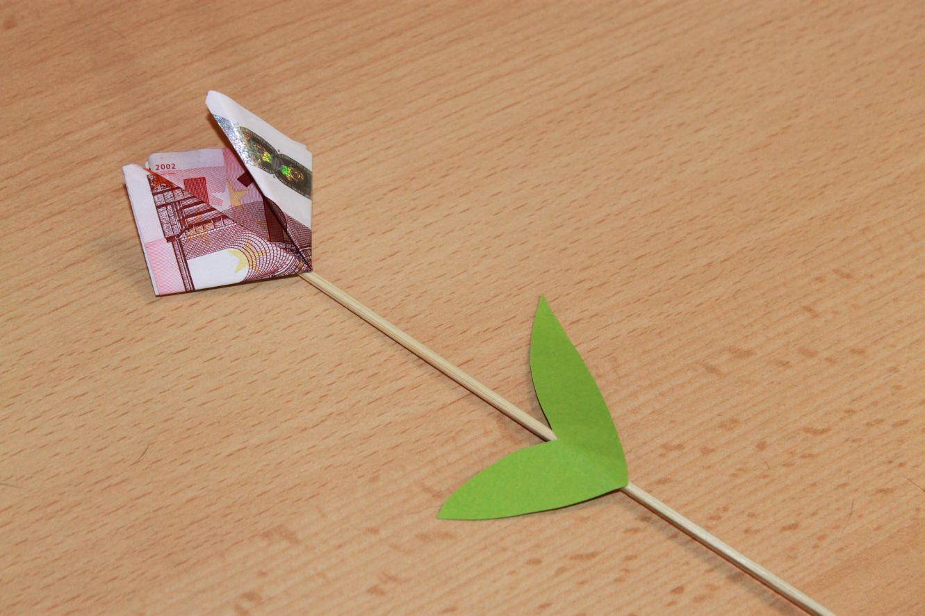 Geldgeschenk-Geldtulpe-001
