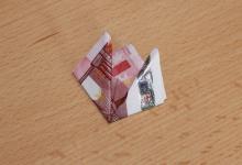 Geldtulpe